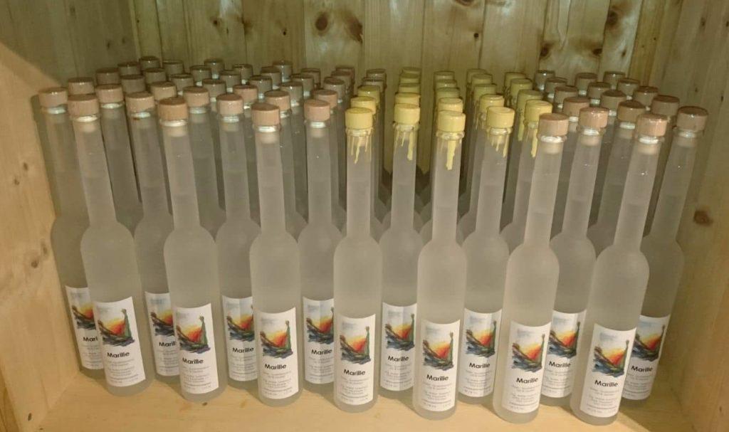 Marillenschnaps Flaschen